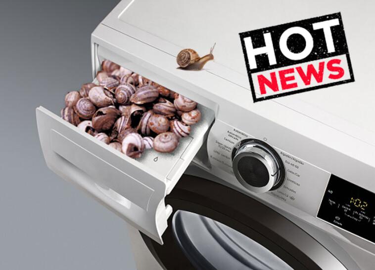 lavadoras-caracoles-factura-luz-001